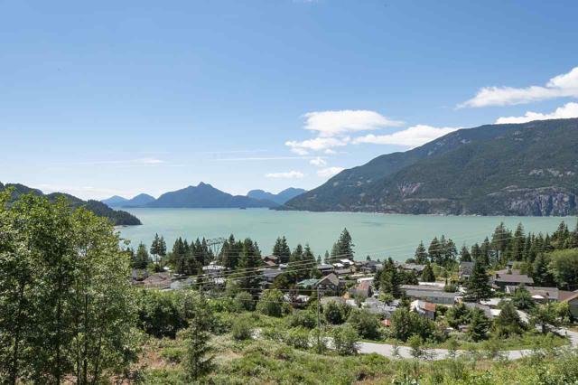 1001 Goat Ridge Drive, Britannia Beach, BC V0N 1J0 (#R2385864) :: RE/MAX City Realty