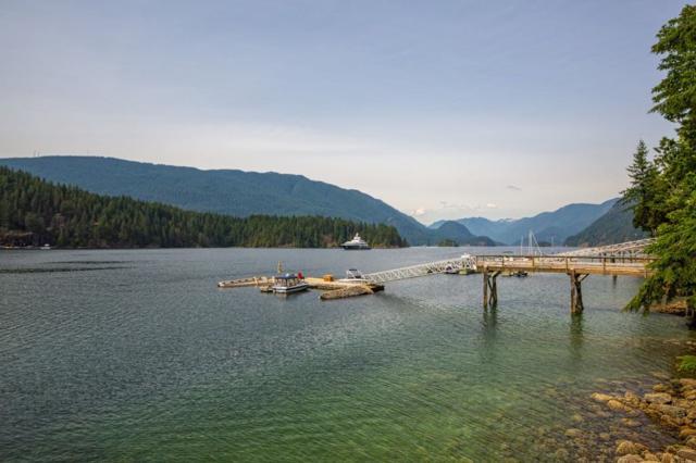 3329 Senkler Road, Belcarra, BC V3H 4S3 (#R2387304) :: Vancouver Real Estate