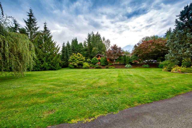 26200 127 Avenue, Maple Ridge, BC V2W 1C3 (#R2387900) :: Vancouver Real Estate