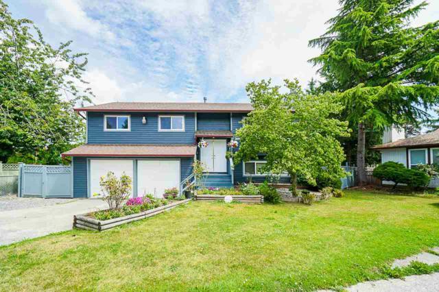 15420 96A Avenue, Surrey, BC V3R 7H2 (#R2388526) :: Royal LePage West Real Estate Services