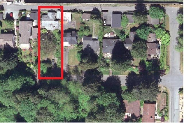 1360 Plateau Drive, North Vancouver, BC V7P 2J6 (#R2388724) :: Vancouver Real Estate
