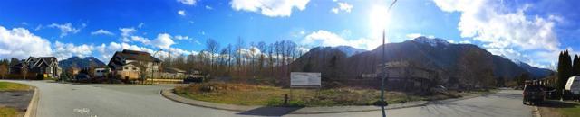 1585 Eagle Run Drive, Squamish, BC V8B 0G4 (#R2388760) :: Macdonald Realty