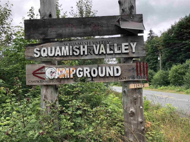 12975 Squamish Valley Road, Squamish, BC V0N 1H0 (#R2388908) :: Vancouver Real Estate