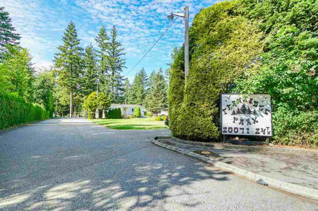 20071 24 Avenue #63, Langley, BC V2Z 2A1 (#R2389125) :: Vancouver Real Estate