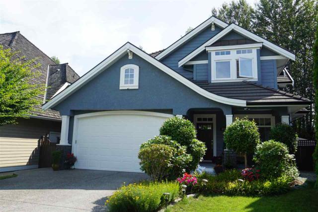 3812 154A Street, Surrey, BC V3Z 0T2 (#R2389284) :: RE/MAX City Realty
