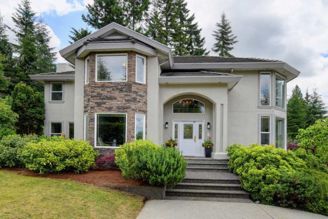26310 127 Avenue, Maple Ridge, BC V2W 1C6 (#R2389336) :: Vancouver Real Estate