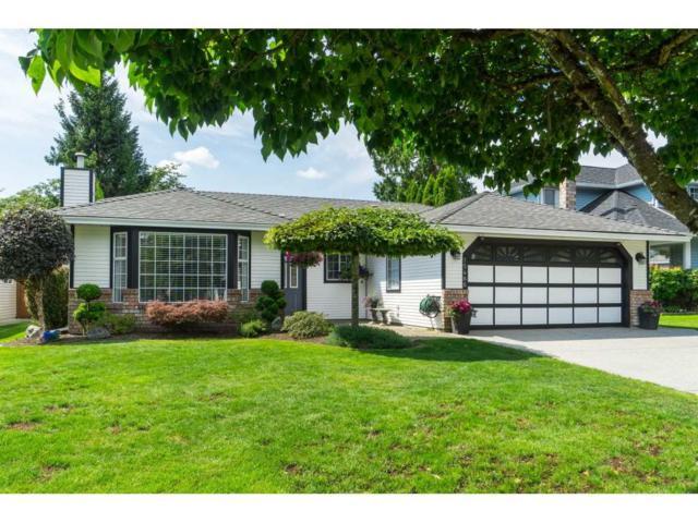 15466 91A Avenue, Surrey, BC V3R 9W8 (#R2389353) :: Royal LePage West Real Estate Services