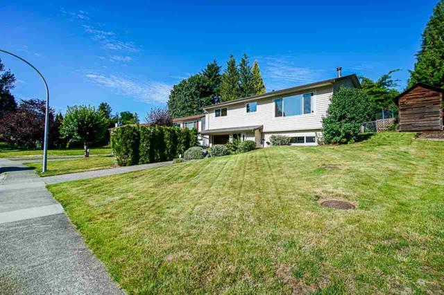 3556 Monashee Street, Abbotsford, BC V2S 7H5 (#R2389722) :: Premiere Property Marketing Team