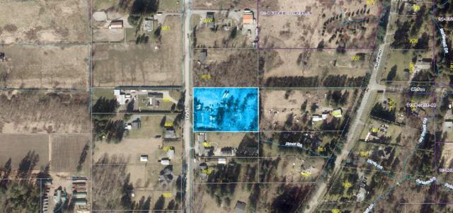 8980 189 Street, Surrey, BC V4N 3M6 (#R2389950) :: Royal LePage West Real Estate Services