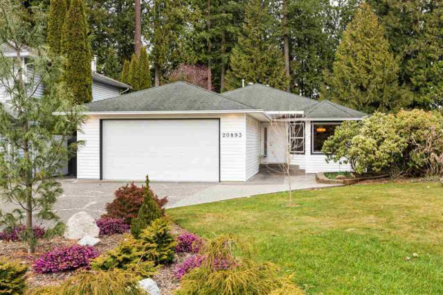 20893 95A Avenue, Langley, BC V1M 2C5 (#R2390107) :: Premiere Property Marketing Team