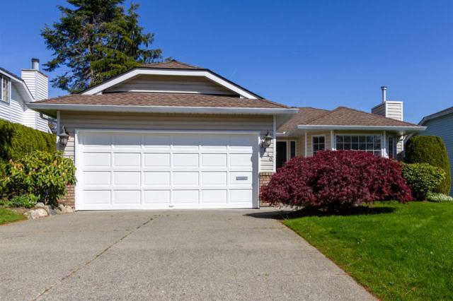 1640 143B Street, Surrey, BC V4A 8M6 (#R2390549) :: Vancouver Real Estate
