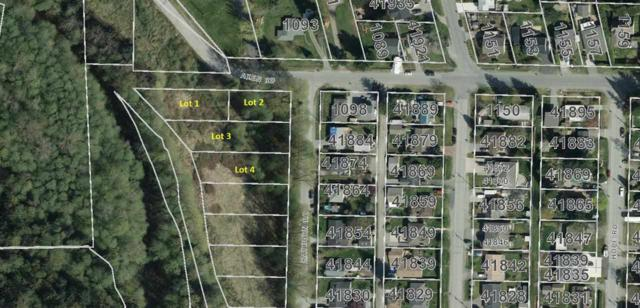 Lot 1-4 Rayburn Road, Squamish, BC V8B 0N6 (#R2391883) :: RE/MAX City Realty