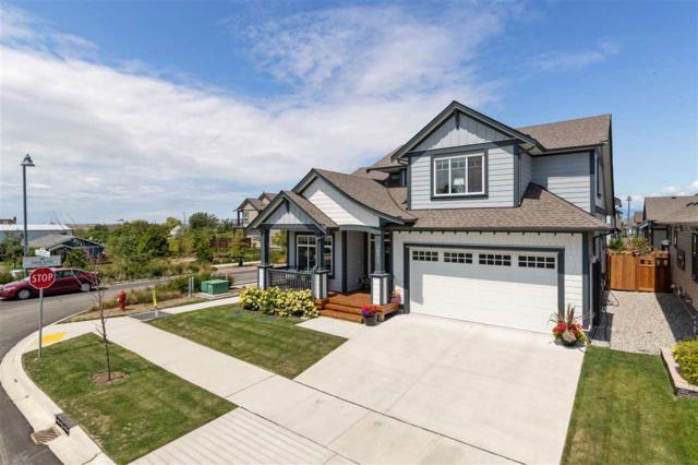 4651 Hawk Lane, Tsawwassen, BC V4M 0B4 (#R2391958) :: Ben D'Ovidio Personal Real Estate Corporation | Sutton Centre Realty