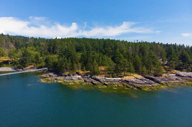 1820 Cape Drive, Bowen Island, BC V0N 1G2 (#R2392091) :: Vancouver Real Estate