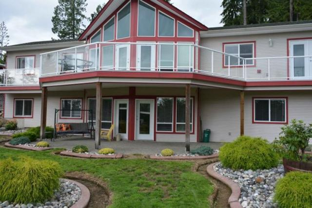 12302 Cardinal Place, Mission, BC V4S 1L3 (#R2392104) :: RE/MAX City Realty