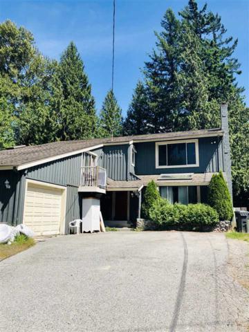 41756 Government Road, Squamish, BC V0N 3G0 (#R2392938) :: Macdonald Realty