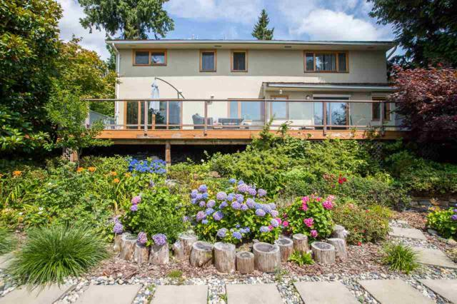 411 Montroyal Boulevard, North Vancouver, BC V7N 3E2 (#R2393552) :: RE/MAX City Realty