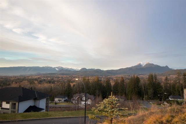 11090 Carmichael Street, Maple Ridge, BC V2W 1G8 (#R2394477) :: Vancouver Real Estate