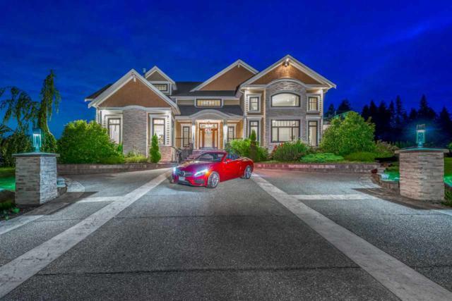 12425 266 Street, Maple Ridge, BC V2W 0E2 (#R2394837) :: RE/MAX City Realty