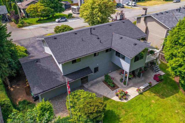 4062 207A Street, Langley, BC V3A 2G6 (#R2395375) :: Premiere Property Marketing Team