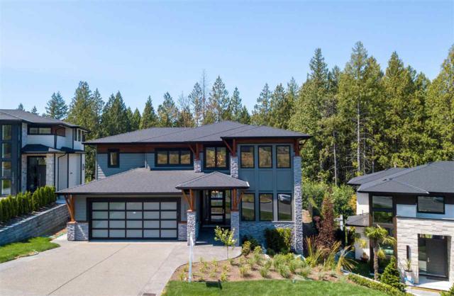 11085 Carmichael Street, Maple Ridge, BC V2W 1G8 (#R2396534) :: Vancouver Real Estate