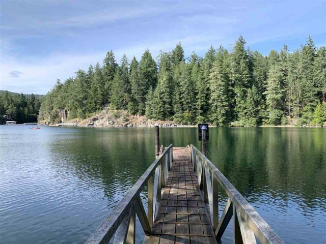 9854 Wescan Road, Halfmoon Bay, BC V0N 1Y2 (#R2396657) :: RE/MAX City Realty