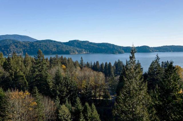 Lot 1 Marine Drive, Granthams Landing, BC V0N 1V0 (#R2396798) :: RE/MAX City Realty