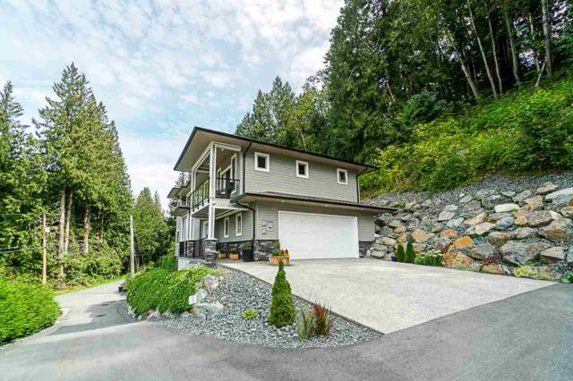 50168 Patterson Road, Chilliwack, BC V4Z 0A2 (#R2396941) :: Six Zero Four Real Estate Group