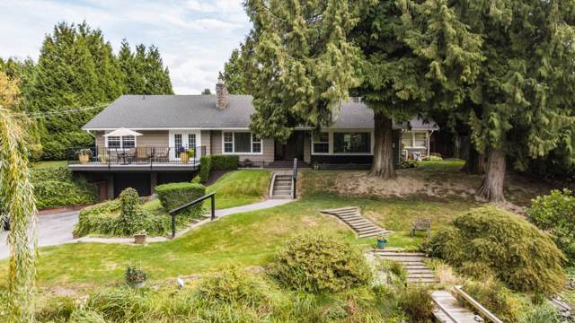 6992 Vedder Road, Sardis, BC V2R 4E1 (#R2403698) :: RE/MAX City Realty