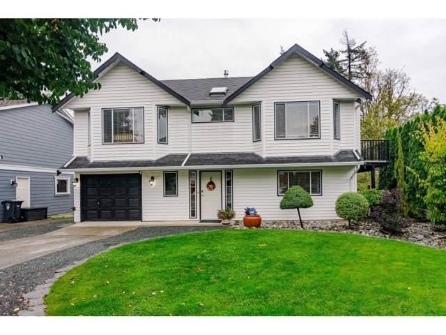 2694 274A Street, Langley, BC V4W 3K4 (#R2404513) :: RE/MAX City Realty