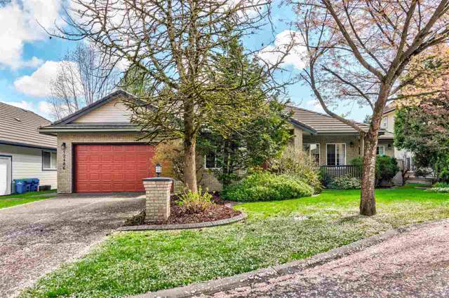 12486 202A Street, Maple Ridge, BC V2X 3P4 (#R2404550) :: Vancouver Real Estate