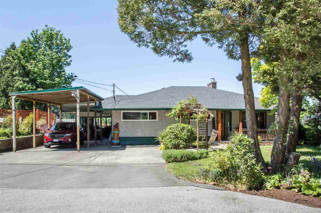 10845 129A Street, Surrey, BC V3T 3K5 (#R2405217) :: RE/MAX City Realty