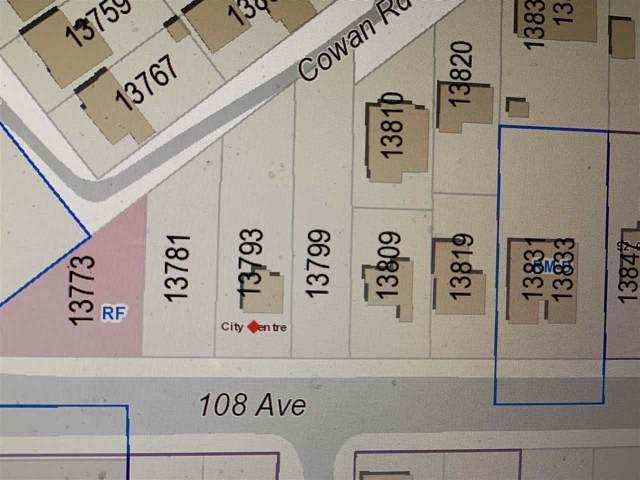 13793 108 Avenue, Surrey, BC V3T 2K6 (#R2405284) :: RE/MAX City Realty
