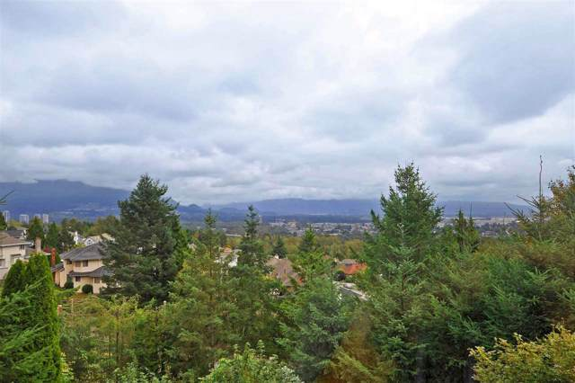 2771 Nadina Drive, Coquitlam, BC V3C 6A5 (#R2405432) :: Vancouver Real Estate