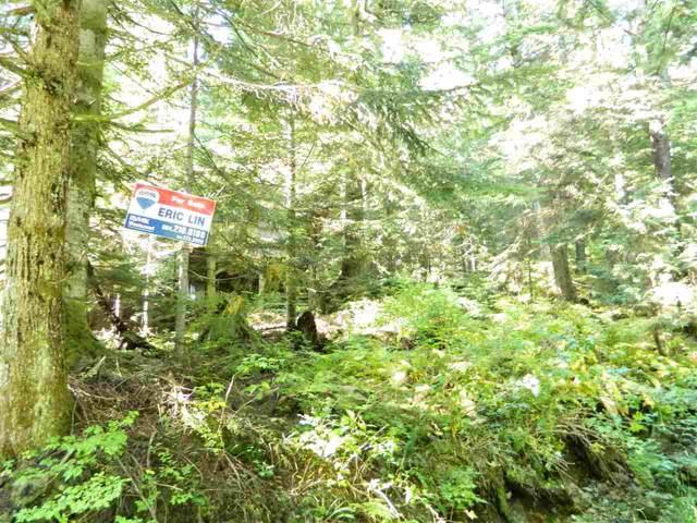 1133 Hollyburn Mtn Terrace D, West Vancouver, BC V0V 0V0 (#R2406743) :: Six Zero Four Real Estate Group