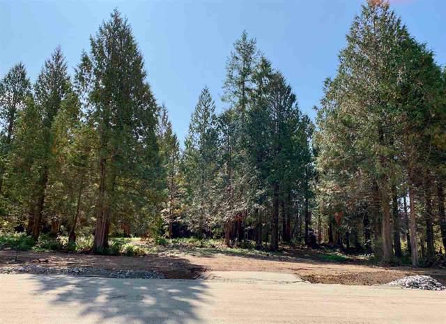 LOT 3 Green Way, Roberts Creek, BC V0N 2W0 (#R2406802) :: RE/MAX City Realty