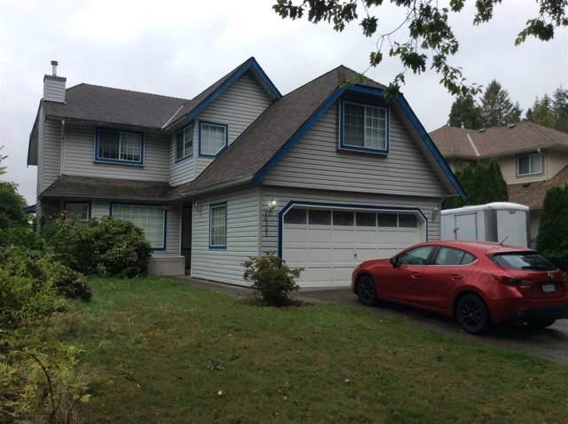 10361 167 Street, Surrey, BC V4N 1Z2 (#R2407047) :: Macdonald Realty