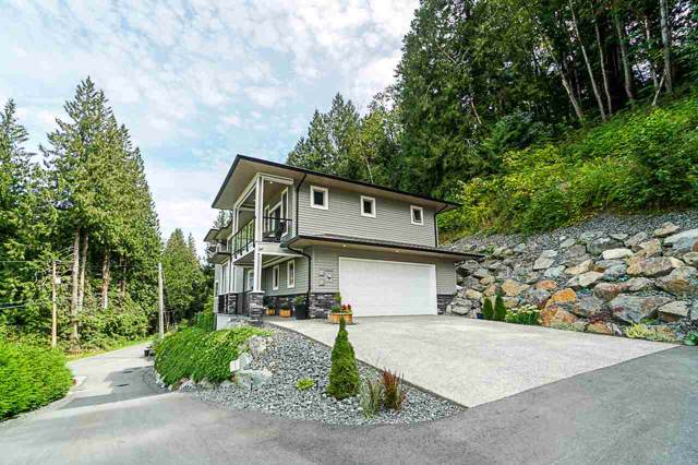 50168 Patterson Road, Chilliwack, BC V4Z 0A2 (#R2410537) :: Six Zero Four Real Estate Group