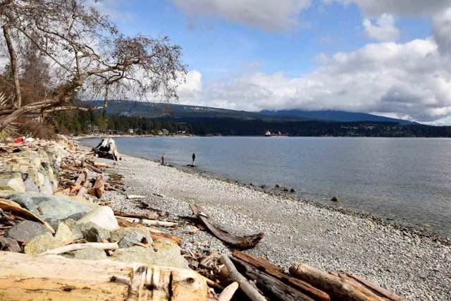 6221 Sunshine Coast Highway, Sechelt, BC V0N 3A7 (#R2412103) :: RE/MAX City Realty