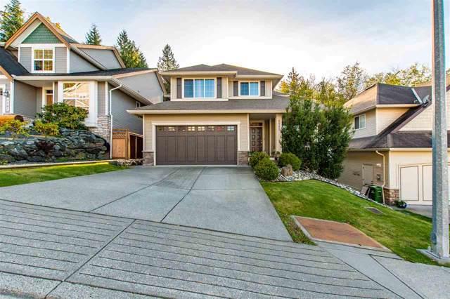 5553 Thom Creek Drive, Sardis, BC V2R 5Z6 (#R2412574) :: Macdonald Realty