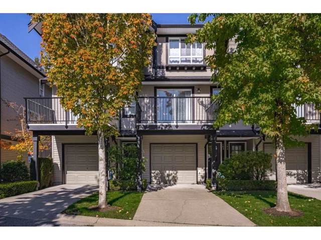 6747 203 Street #163, Langley, BC V2Y 3B5 (#R2412939) :: RE/MAX City Realty
