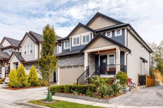 10030 247B Street, Maple Ridge, BC V2W 0H1 (#R2413303) :: RE/MAX City Realty
