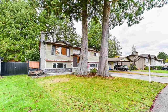 5011 204TH Street, Langley, BC V3A 7J9 (#R2414334) :: Six Zero Four Real Estate Group
