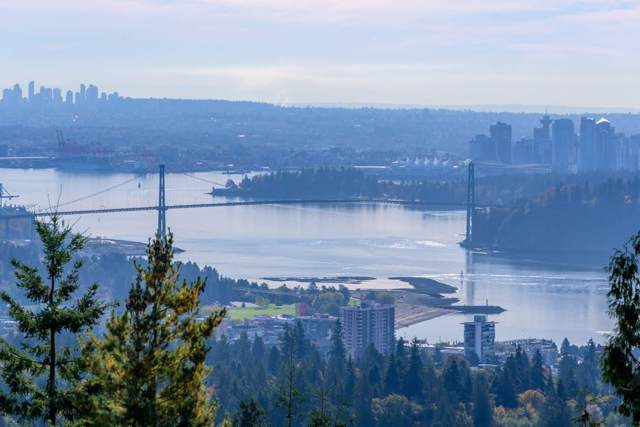 2236 Folkestone Way #43, West Vancouver, BC V7S 2X7 (#R2414632) :: RE/MAX City Realty