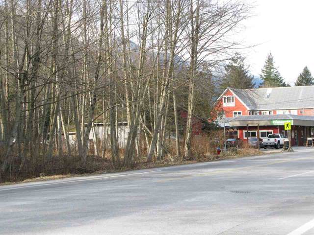 41655 Government Road, Squamish, BC V0N 1H0 (#R2417333) :: RE/MAX City Realty