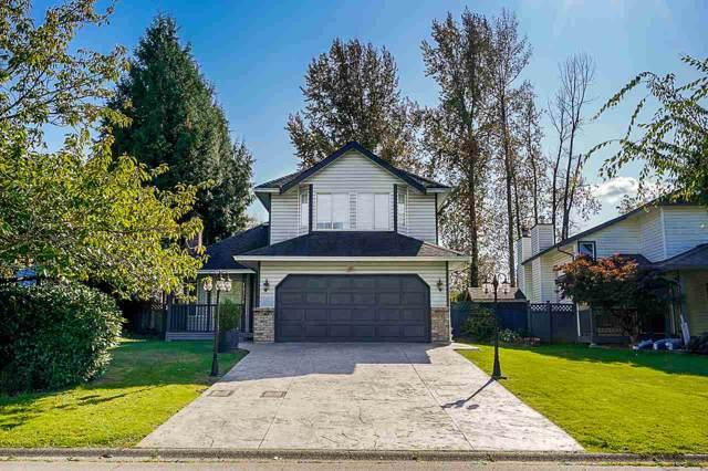 15338 111 Avenue, Surrey, BC V3R 9H7 (#R2421927) :: Premiere Property Marketing Team