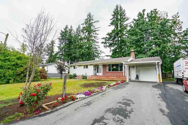 33753 Beechwood Drive, Abbotsford, BC V2S 1S5 (#R2423747) :: Premiere Property Marketing Team