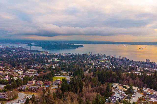 1620 Chippendale Road, West Vancouver, BC V7S 3G6 (#R2426377) :: RE/MAX City Realty
