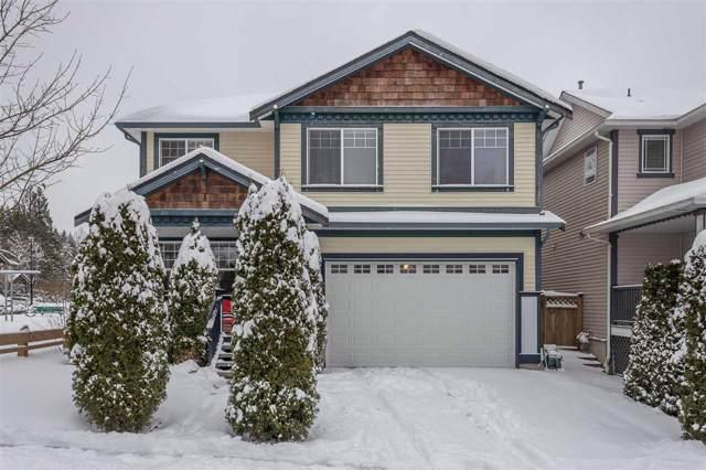 24020 Hill Avenue, Maple Ridge, BC V2W 1Z9 (#R2429276) :: RE/MAX City Realty