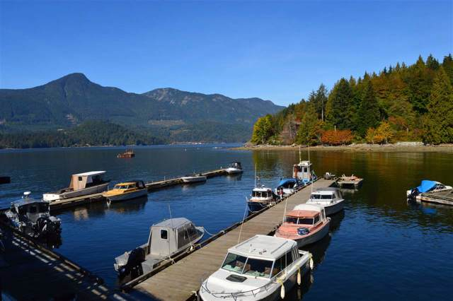 LOT 85 West Bay Road, Gambier Island, BC V0N 1V0 (#R2429725) :: Initia Real Estate